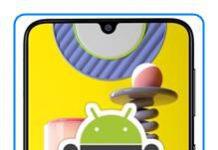 Samsung Galaxy M31 geliştirici seçenekleri